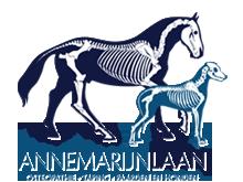 Annemarijn Laan